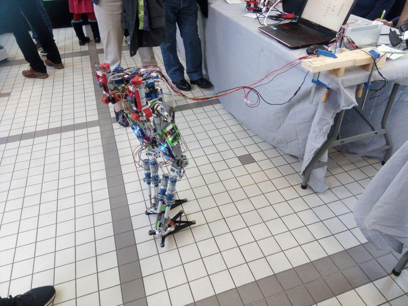 Robot marcheur